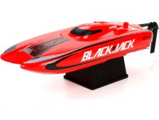 Blackjack 9 2.4GHz RTR