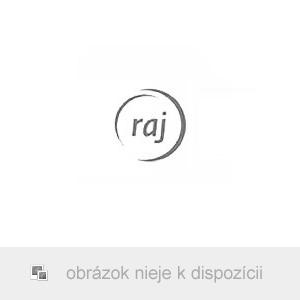 AKCIA - Traxxas Slash 1:10 RTR červený-X